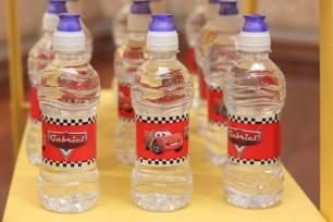 Garrinhas de água