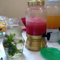 sucos e água saborizada